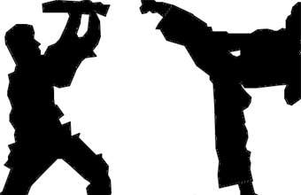 Associação de Karate Tsuru Kai